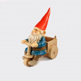 Gnome on cart-0