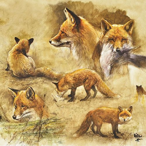 WILD Fox Napkins-247