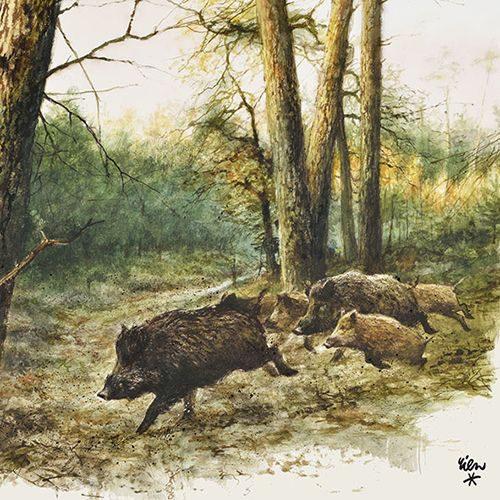 Servetten WILD Wildzwijn-253