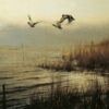 513513_RienPoortvlietNatuur_Natuurvogels_2